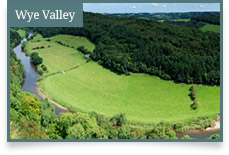 Wye Valley